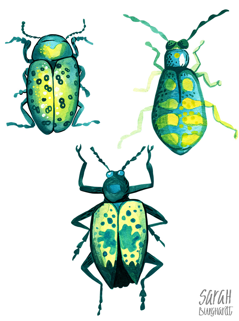 Beetles Watercolor Pattern
